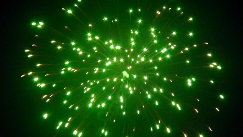 Green Firecrackers For Diwali 2018: What Are Eco-Friendly Crackers Approved By the Supreme Court?