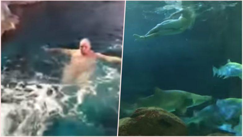 Watch Video of Naked Man Jumping into Toronto Ripley's Aquarium Shark Tank! Swims Around Amidst Full of Sharks