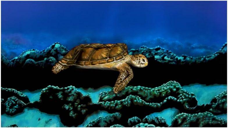 Body Painting Artist Johannes Stötter Transforms Model Into a Turtle! (Watch Video)