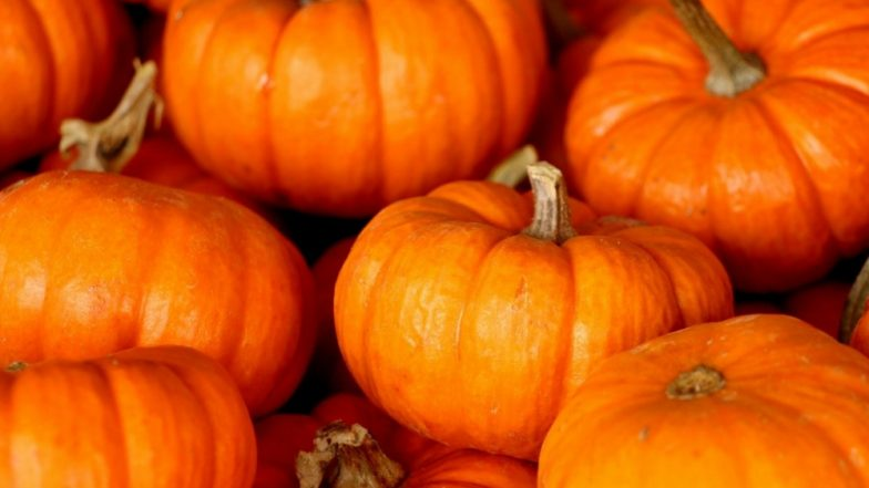 Pumpkin Health Benefits: 7 Reasons Why the Fruit Is More Than Just a Jack-o-Lantern for Halloween