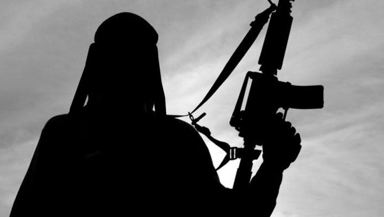 Pakistan Senate Panel Seeks Report From Govt on Action Taken Against Terrorists