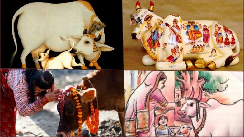 Govatsa Dwadashi Images & Vasu Baras Rangoli, Photos of Gau Mata Puja: Celebrate This Festival of Cows Before Dhanteras and Diwali 2018 Begins