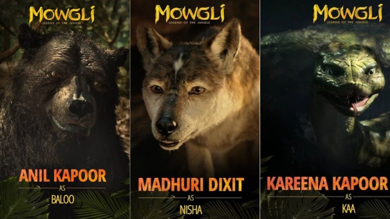 Madhuri Dixit And Anil Kapoor to Reunite On Screen For Netflix India's Mowgli: Legend of the Jungle; Kareena Kapoor Khan Also Joins The Cast