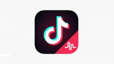 Music App TikTok Published Over 5.3 Million Videos in a Day on Diwali 2018!