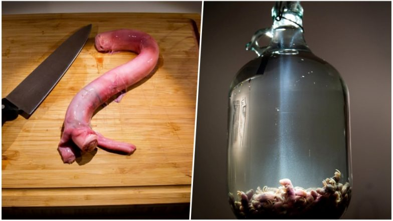 Disgusting Food Museum Opens in Sweden! From Bull's Penis to Mouse Wine, Here Is the Menu (View Pics)