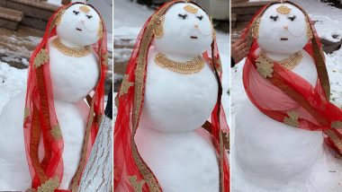 Snow Woman Bride, Farah Made by a Canadian Family Is Our Latest Crush Who Is Going Viral for All the Right Reasons