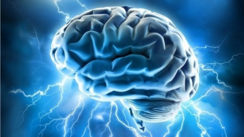 World Epilepsy Day 2018: Know The Causes, Symptoms and Treatment of This Neurological Disorder?