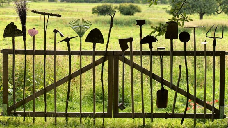 How to Take Care of Gardening Tools? Follow These Steps to Ensure Good Condition of Equipments at Home
