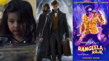 Movies This Week: Pihu, Mohalla Assi, Rangeela Raja, Fantastic Beasts 2, Boy Erased, Widows – Which One Will You Pick This Weekend? Vote