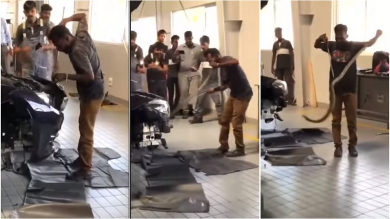 Six-Feet-Long Cobra Enters BMW GT, Tamil Nadu Businessmen Get Their Luxury Car Dismantled to Remove It (Watch Video)