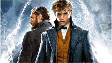 Fantastic Beasts The Crimes of Grindelwald's First Reactions Are Out! Harry Potter Spinoff Gets High Praise From Early Screening - Read Tweets