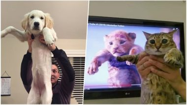 'The Lion King' Scene of Rafiki Holding Simba Recreated by Twitterati With Pet Dogs & Cats and the Pics Are Too Adorable