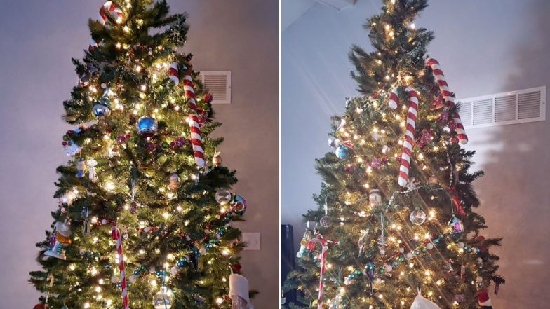 This Cat Hiding In Christmas Tree Is Difficult To Find And