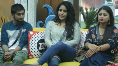 Bigg Boss 12, 14th December 2018 Episode Written Updates: Romil Chaudhary Thinks Sreesanth Is Not Genuine