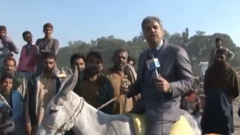Forget Chand Nawab, This Pakistani Reporter's Video of Falling off a Donkey While Reporting is Hilarious!