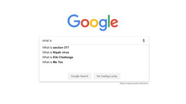 Google Year in Search 2018: 'What is Section 377 and Kiki Challenge,' Top Questions Indians Asked This Year