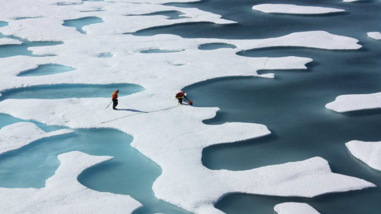NASA Satellite Maps Antarctica Ice Sheets, Sea Ice, Forests