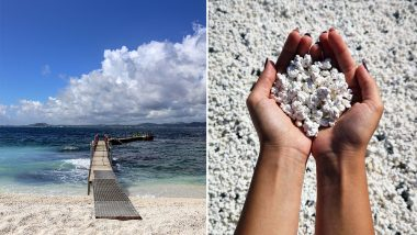 Popcorn Beach! This Sea-Side in Spain's Canary Islands Has Corals Exactly Like Popcorn, View Stunning Photos and Video