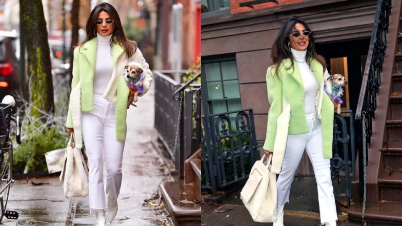 Not Her Boo But Priyanka Chopra Takes Twinning To A Whole New Sphere With Her Pupper Diana Chopra - View Pics
