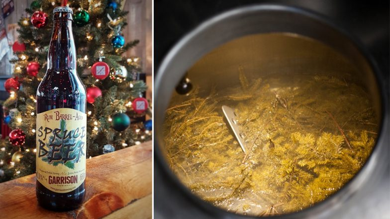 'Christmas in a Bottle' Drink: Spruce Beer Made From Pine Trees is Canada's Ancient Custom During Winter Festival