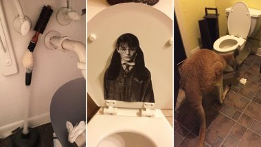 Women Sharing Weirdest Things in Men's Washroom Has Hilarious Results From Kangaroo to Hermoine Granger on Toilet Seat, View Videos and Pics!