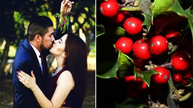 Why Do People Kiss Under The Mistletoe? Know The Origin and Legend Behind Popular Christmas Tradition
