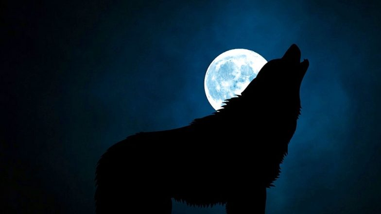 Complete list of dates for every full moon in 2019