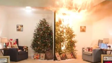 Christmas 2018 Fire Safety: US CPSC Video Shows How Dangerous Dry Xmas Trees Can Be in the Holiday Season