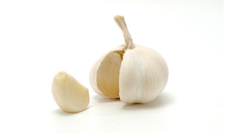 Garlic Oil Can Kill Bacteria That Cause Lyme Disease, Says New Study