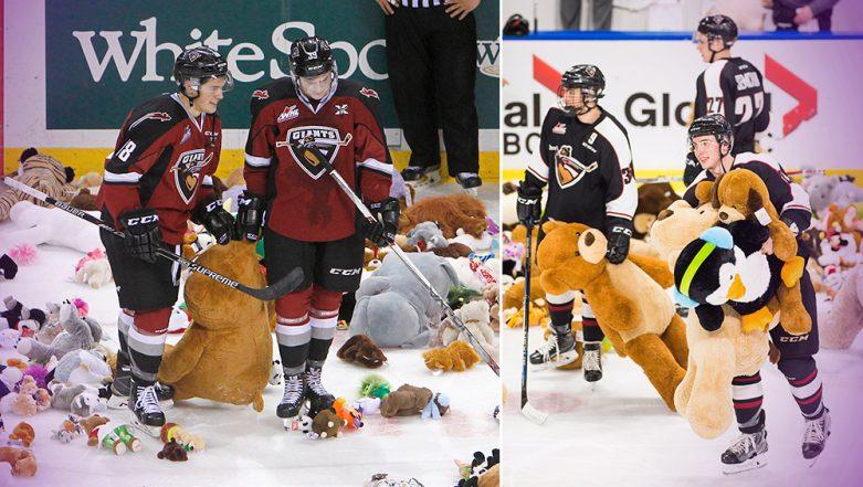 Hershey Bears' Ice Hockey Fans Throw 34,000 Teddy Bears Onto Rink Breaking World Record (Watch Video)