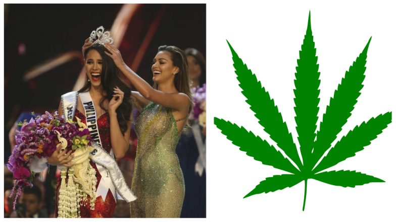 Miss Universe 2018 Catriona Gray Answers to Question On Legalisation of Marijuana: Philippines Beauty Queen Delivers Balanced Answer To Win