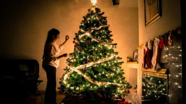 Real vs Artificial Christmas Tree: Which Xmas Tree Should You Buy This Holiday Season? Weigh the Pros and Cons Before the Big Purchase
