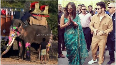 Priyanka Chopra-Nick Jonas Wedding Controversy: Not Just PETA, Even Fans Are Unhappy With The Actress For Using Animals at The Baraat - Read Tweets