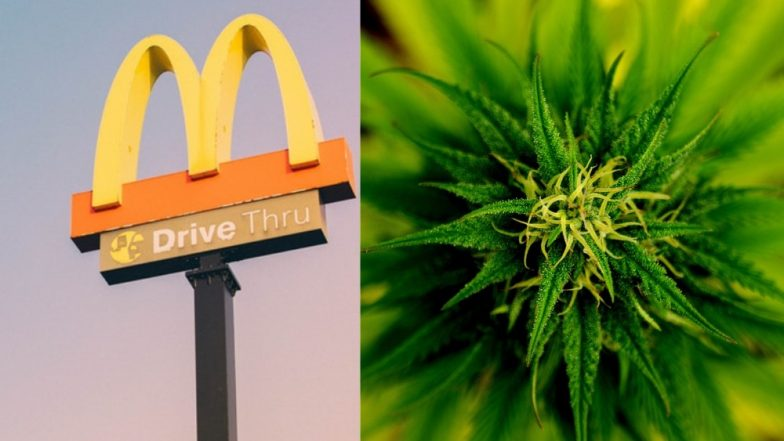 US Man Tries to Buy Food at McDonald's With a Bag of Weed