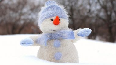 Christmas 2018: Do You Know Why We Build a Snowman on Xmas? Know How to Make It Right the Way