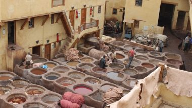 Kumbh Mela 2019: Closure of Tanneries Worries Workers and Meat, Leather Exporters