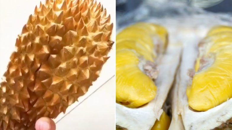 Rare Durian Fruit 'J-Queen' Fetches $1,343 Each in Indonesia! World's Smelliest Fruit Becomes Most Expensive