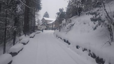 Himachal Pradesh: Educational Institutions in Kullu to Be Shut Friday Due to Snowfall, Hailstorm