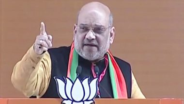 Mission 2019: Congress Injected 'Casteism, Nepotism, Appeasement' in Indian Politics, Says Amit Shah at BJP National Convention
