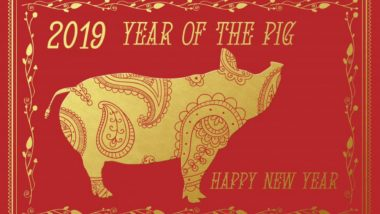 Chinese New Year 2019 Date: Which Animal Is It This Year? What Is Your Chinese Zodiac Animal?