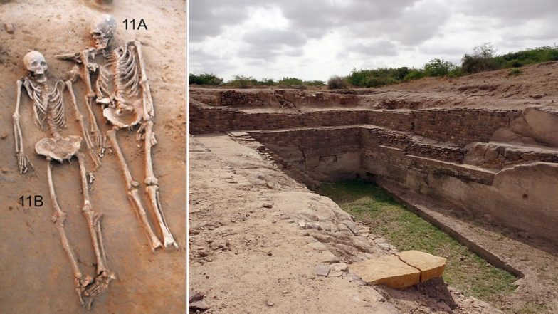 First Couple Grave Discovered in Harappan Cemetery at Rakhigari by Pune's Deccan University