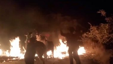 Karnataka Shocker: Cows 'Chased on Flames, Made to Walk Through Fire' as Part of Makar Sankranti Ritual; Watch Video
