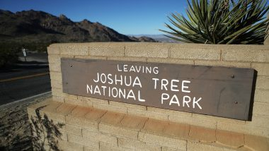 Joshua Tree National Park 'May Take 300 Years to Recover' From US Government Shutdown; Here's Why