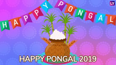 Pongal Images & HD Wallpapers for Free Download Online: Wish Happy Thai Pongal 2019 With Beautiful GIF Greetings & WhatsApp Sticker Messages