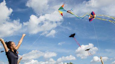 Makar Sankranti 2019: Easy DIY Videos to Make Colourful Kites on This Kite Flying Festival