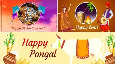 Lohri, Makar Sankranti & Pongal 2019 Advanced Wishes: WhatsApp Messages & Stickers, GIF Images, SMS & Facebook Photos to Share on these Harvest Festivals