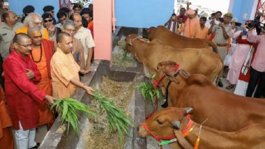 Gau Kalyan Cess Imposed by Yogi Adityanath Led UP Government to Protect Stray Cow, Alcohol Prices May Rise