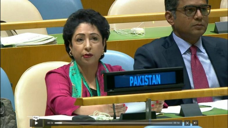 Pakistan Launches Attack on India's Quest for Permanent Seat on UNSC