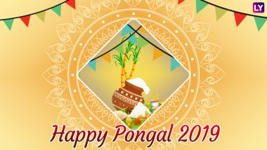 Pongal 2019 Wishes in Tamil & Telugu: WhatsApp Stickers, Messages, SMS, Facebook Status, GIF Image Greetings to Wish on Thai Pongal