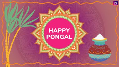 Happy Pongal 2019 Greetings: Best WhatsApp & Hike Stickers, Facebook Quotes, GIF Images Messages & SMS to Wish on Thai Pongal